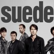 Suede110912